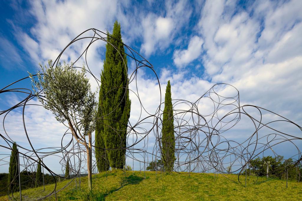 Vigne Museum, Tenuta Livio Felluga, Friuli (foto Luigi Vitale)